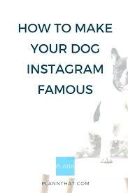 Cute Dog Quotes For Instagram Cool Cute Dog Quotes For Instagram Amazing Dog Quotes Funny Short 48
