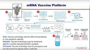 """Alp Twitter પર: """"mRNA aşısı nasıl geliştirildi.. Bu konu komplo teoricileri  başta birçok kişinin en fazla şüphe duydukları konu. Bunun tek nedeni var.  Bilgisizlik.. Ve soner yalçın gibi spekülasyon yaratıp kitap satmak"""