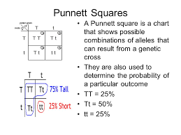 Genetics The Science Of Heredity Ppt Video Online Download