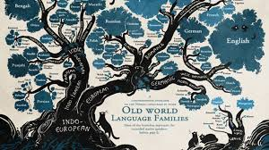 Languages Tree Chart Feast Your Eyes On This Beautiful Linguistic Family Tree