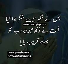 Best Islamic Quotes About Life In Urdu Daily Motivational Quotes