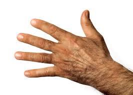 Resultado de imagen de hand