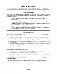 resume summary examples for customer service resume example resume overview examples