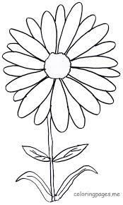 Small Picture Daisy Flower Coloring Pages Wallpaper Download cucumberpresscom