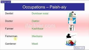 learn what professions and occupations are called in english hindi and urdu