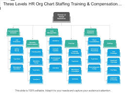 Hr Organizational Chart Sample Three Levels Hr Org Chart Staffing Training And Compensation