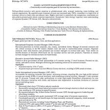 Cv For Account Manager Resume Format Of Accounts Executive Thrifdecorblog Com