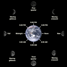 Lunar Phase Chart Do Lunar Phases Actually Affect The Bite