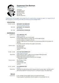 Resume 50 Unique Basic Resume Format High Definition Wallpaper