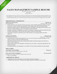 Management Resume Examples Custom Sales Manager Resume Sample Writing Tips