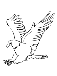Small Picture Printable bald eagle coloring pages ColoringStar