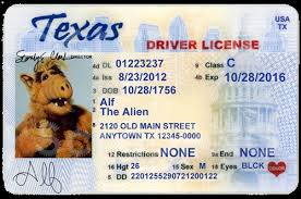 Template South Drivers License African Blog - Fake Crownasmer's
