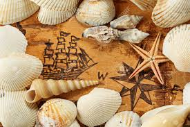 Starfish Chart Shells And Starfish On The Sea Chart With Ship On The Order Of