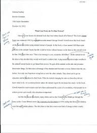 animal farm essay sabrina s dp above is my essay draft 2 teacher s comments