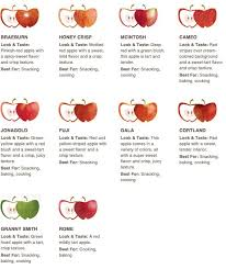 Apple Texture Chart Apples Galore Good To Know Apple Crisp Pie Perfect Pie