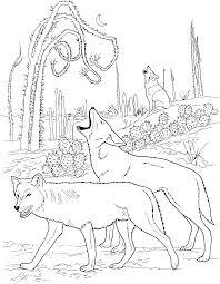 Adult Coloring Pages Animal Patterns Google