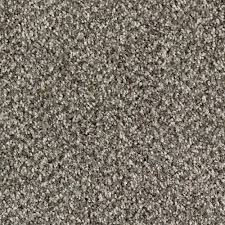briarmoor i color ironwork texture 12 ft carpet