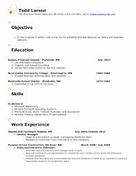 Sample Resume For Jewelry Sales Associate Awesome Gallery Of Sample
