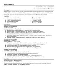 Account Manager Resume Objectives Resume Example Pictures Hd