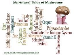 learn about the nutritional value of mushrooms at mushroom appreciation