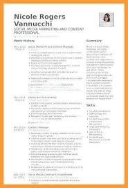 Artist Manager Resume Job Description 12 13 Social Media Manager Resume Examples Aikenexplorer Com