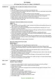 Simple Construction Project Administrator Job Description Project