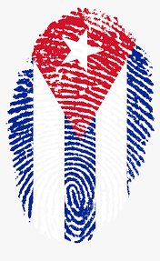 Are you searching for puerto rico png images or vector? Png Puerto Rico Transparent Png Kindpng