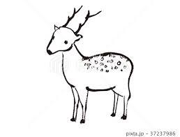 奈良の鹿のイラスト素材 Pixta