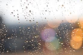 「梅雨 イラスト 無料」の画像検索結果
