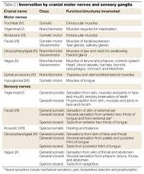 Cranial Nerve Testing Chart Table 2 Innervation By