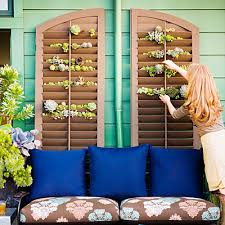 vertical succulent garden using a shutter