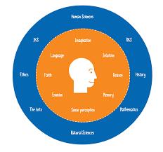 the structure of tok net newtok the tok diagram