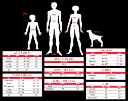 Disguise Size Chart Costumes Size Charts Johnnie Brocks Dungeon Party Warehouse