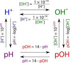 Poh Scale And Calculations Read Chemistry Ck 12
