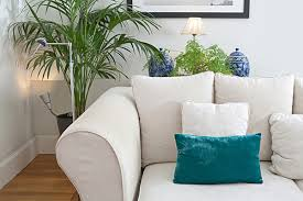 Image result for peaceful home images