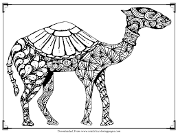 Small Picture Coloring Pages Animals Camel Coloring Pages Pictures Camel