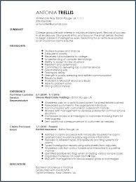 Font For Professional Resume Artemushka Com