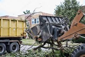 4,520 Tree removal Stock Photos   Free & Royalty-free Tree removal Images    Depositphotos