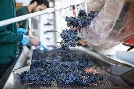 even though our winemaking team has been sourcing and blending gs from washington and california for over ten years this method is still considered