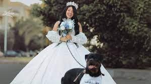 هبة مبروك تتزوج والعريس.... كلب - YouTube