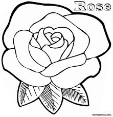 selected coloring pages of a rose roses page fun tearing 8 geright obsession coloring pages of a rose free printable