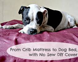 Diy Dog Bed From Crib Mattress To Dog Bed With No Sew Diy Cover Your Sassy Self