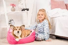 See more of ebay kleinanzeigen on facebook. Absperrgitter Hund Hundeabsperrgitter Test Vergleich 2020