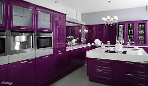 Purple Kitchen 17 Best Purple Kitchen Paint Ideas On Pinterest Purple Kitchen