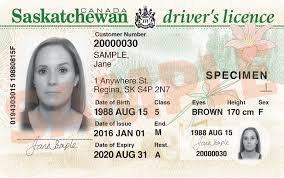 - Sgi Driver's Driver's Licence Licence