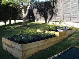 raised garden beds raised garden