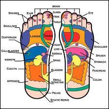 Foot Healing Chart Diy Foot Reflexology For Simple Self Healing Video