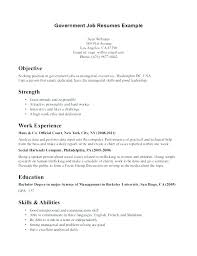 Government Resume Example Federal Government Government Application