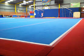 Gymnastics Floor Fund My Neighbourhood