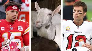 brady vs mes goats and goats have